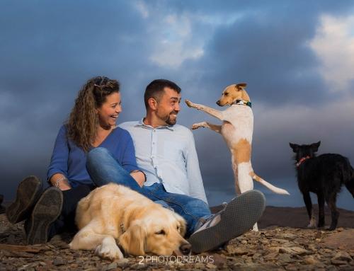Pet Photographer, dog photography session England R&J